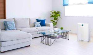 Осушители воздуха – принцип работы, назначение и применение