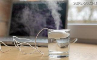Сухой воздух? 7 способов повысить влажность в комнате