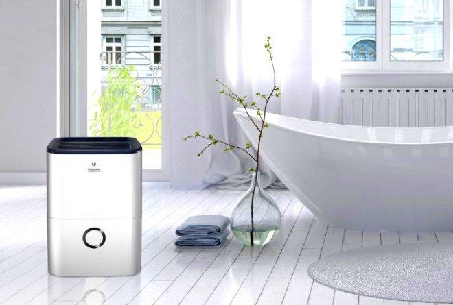 Ионизатор воздуха в интерьере квартиры