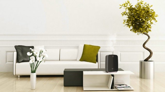 Какие характеристики необходимо учитывать при выборе увлажнителя воздуха для дома